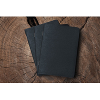 Travel note (pack of 3)